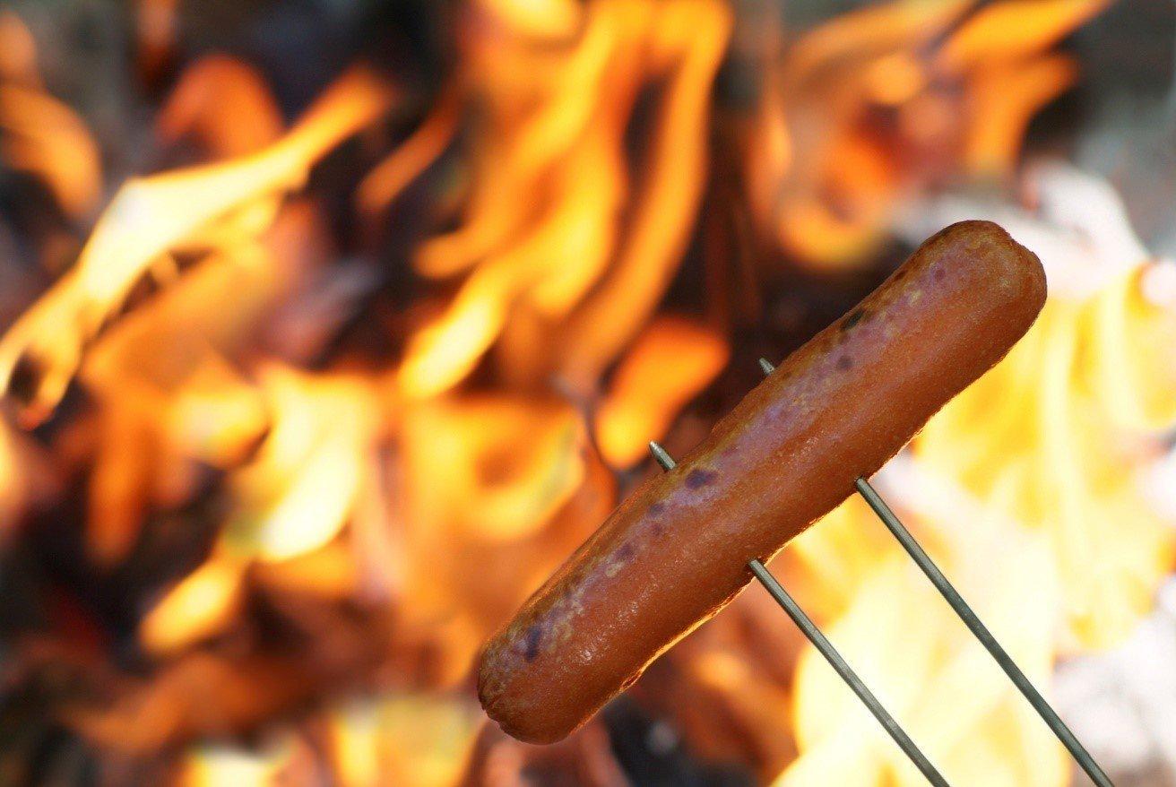 Hot Dog Roast