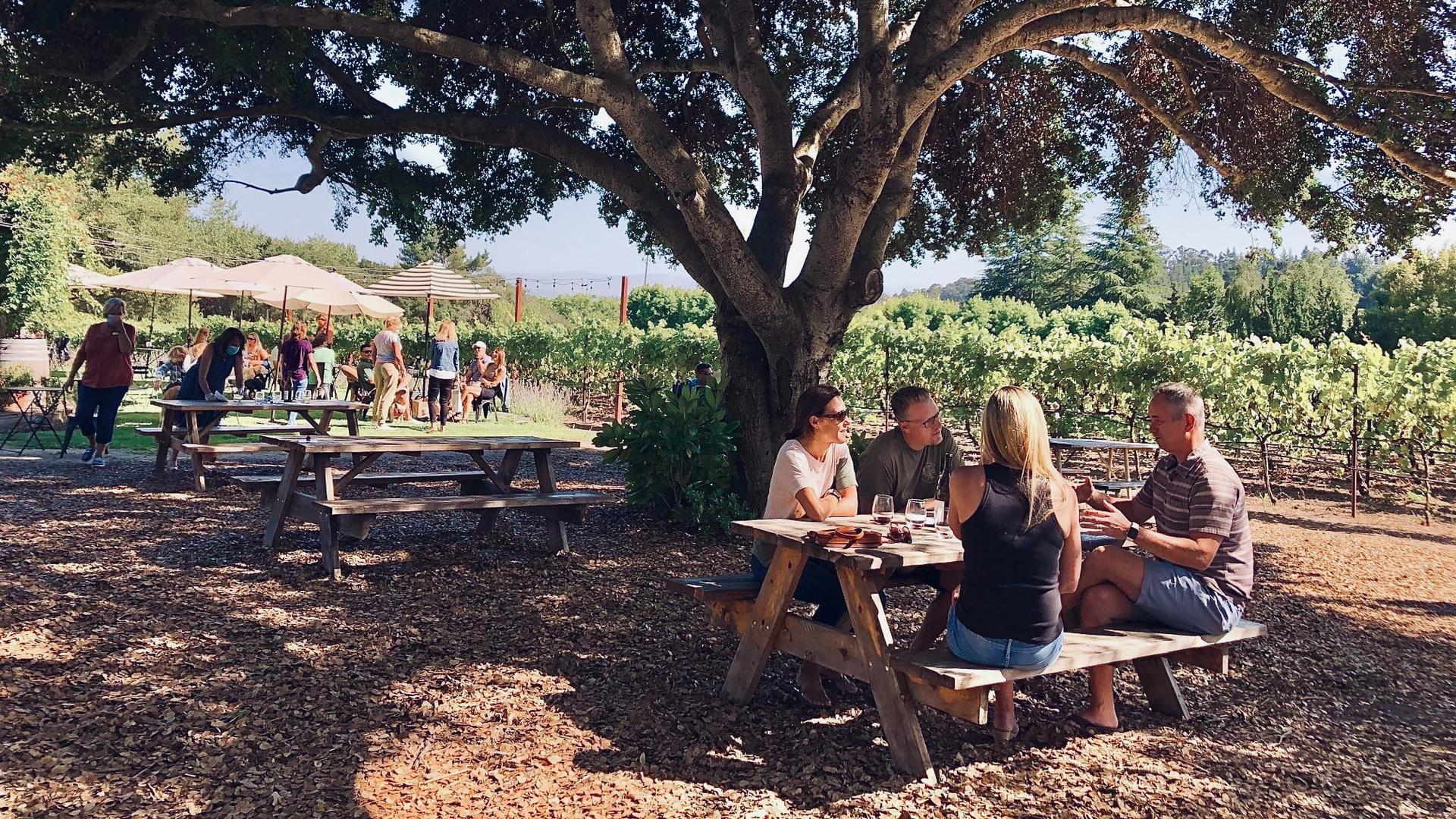Santa Cruz Mountain Vintners Festival