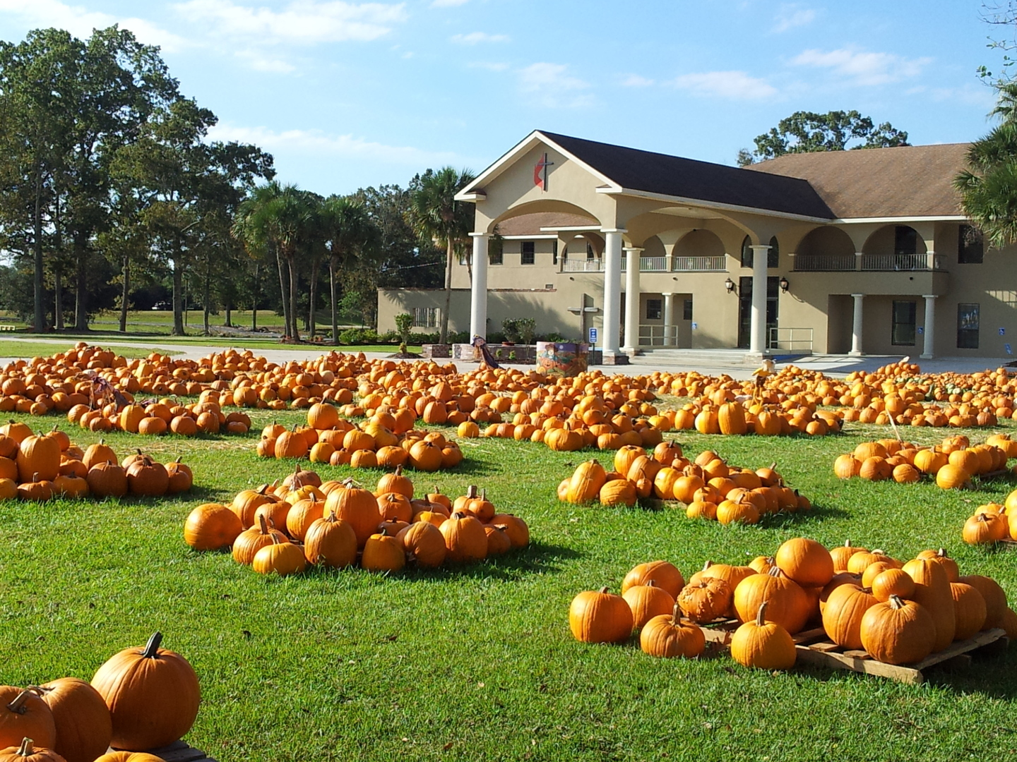 NewSong Community Church Pumpkin Patch and FREE Fall Fest