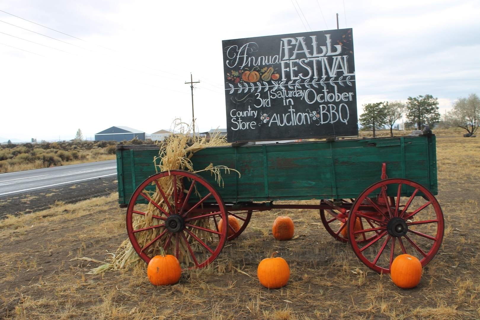 28th Annual Fall Festival & Auction - Saturday October 16th