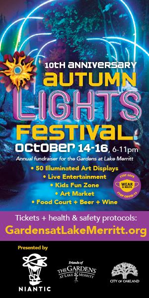 10th Anniversary Autumn Lights Festival - 10th Anniversary Autumn Lights Festival