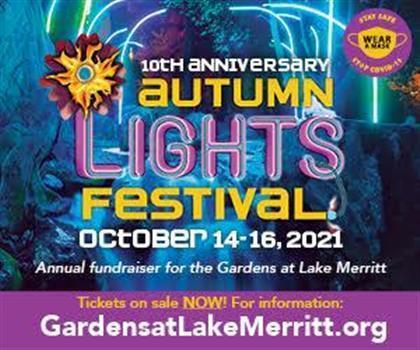 10th Anniversary Autumn Lights Festival