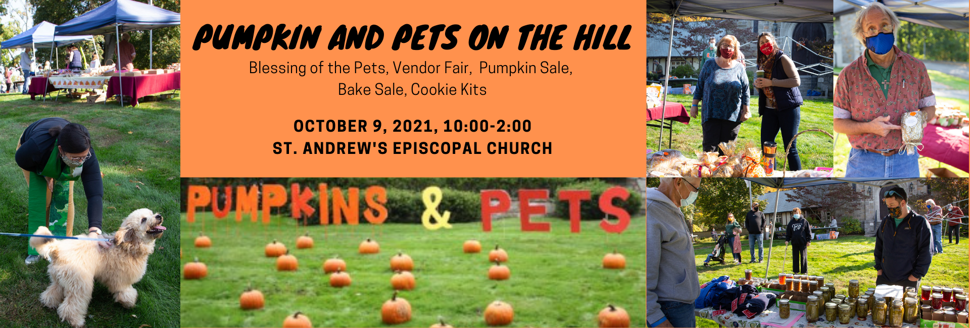 Pumpkin and Pets on the Hill