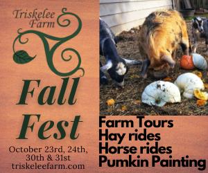 Triskelee Farm Fall Fest 2021
