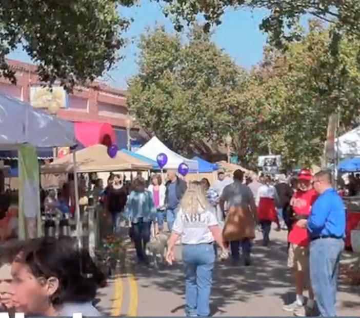 Alachua Main Street Harvest Festival November 14th, 2021