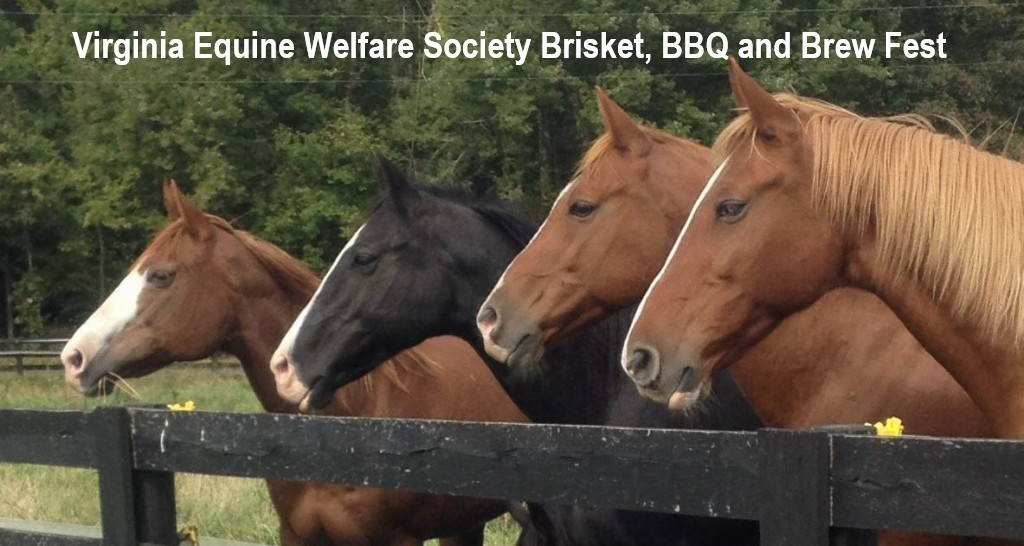 Virginia Equine Welfare Society Brisket, BBQ and Brew Fest